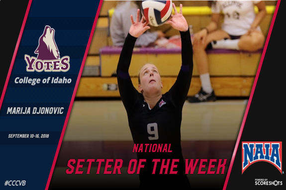 CI's Djonovic Named National Setter of the Week — No  3